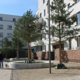 2021-05-05-TPW-Borntalbogen Erfurt